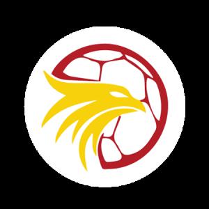 Logo der HSG Bieberau/Modau